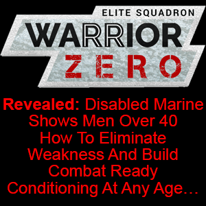 warrior zero project